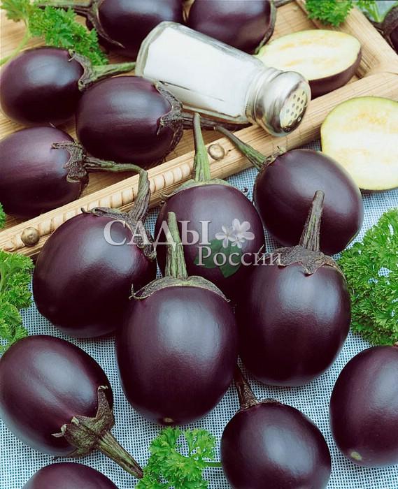 Баклажаны Шалун F1Баклажаны<br>Внешним видом во многом похож на «Колобок». Роднит их прежде<br>всего необычная форма плодов. Мы привыкли, что баклажаны бывают<br>красивой грушевидной формы, но это классический вариант.<br>