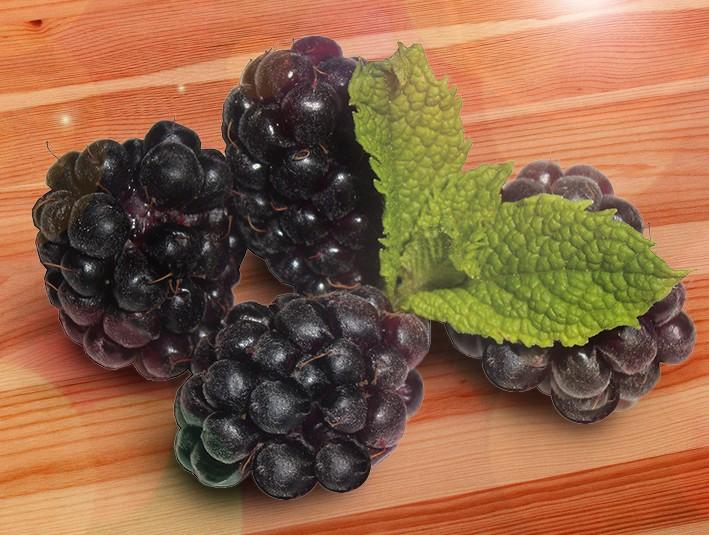 Малино-ежевичные гибриды БойсенберриМалино-ежевичные гибриды<br>Бойсенберри или Бойсенова ягода — один из лучших малино-ежевичных<br>гибридов. Иногда встречается название — Нектарберри, которое<br>говорит о богатом, восхитительном незабываемом аромате.<br>