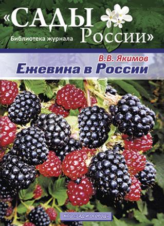 В. В. Якимов Ежевика в России
