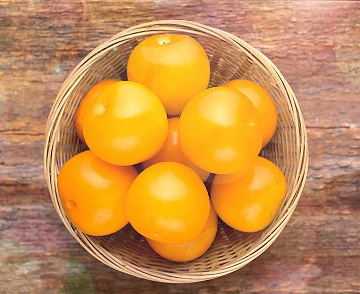 Слива Уральская золотистаяСлива<br>Бесценный подарок. Великолепный среднеспелый сорт, красивый,<br>изумительно вкусный, высокоурожайный, отлично зимует.<br>