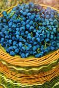 Голубика Дениз голубая