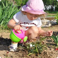 Как сделать детский огород
