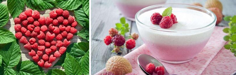 Как вырастить садовую малину для десертов