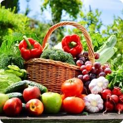 Какие овощи предшественники
